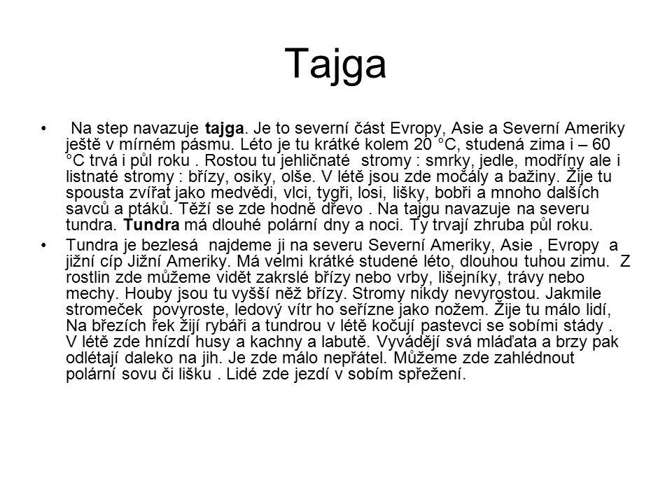 Tajga Na step navazuje tajga. Je to severní část Evropy, Asie a Severní Ameriky ještě v mírném pásmu. Léto je tu krátké kolem 20 °C, studená zima i –