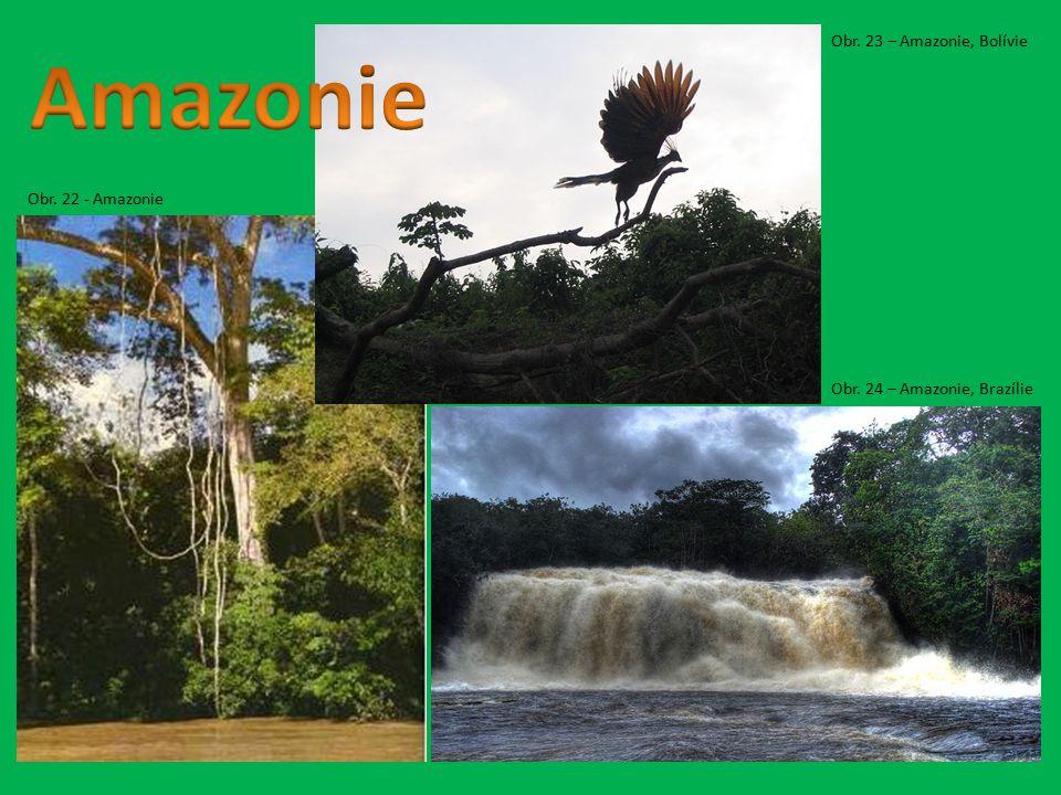 Obr. 22 - Amazonie Obr. 24 – Amazonie, Brazílie Obr. 23 – Amazonie, Bolívie