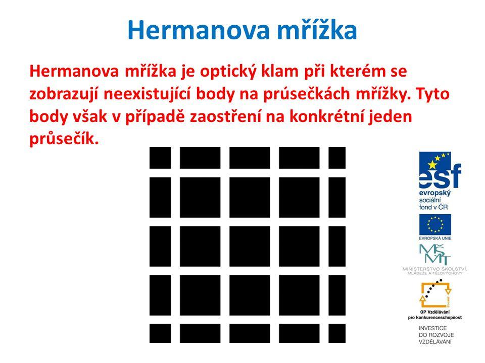 Hermanova mřížka Hermanova mřížka je optický klam při kterém se zobrazují neexistující body na prúsečkách mřížky. Tyto body však v případě zaostření n