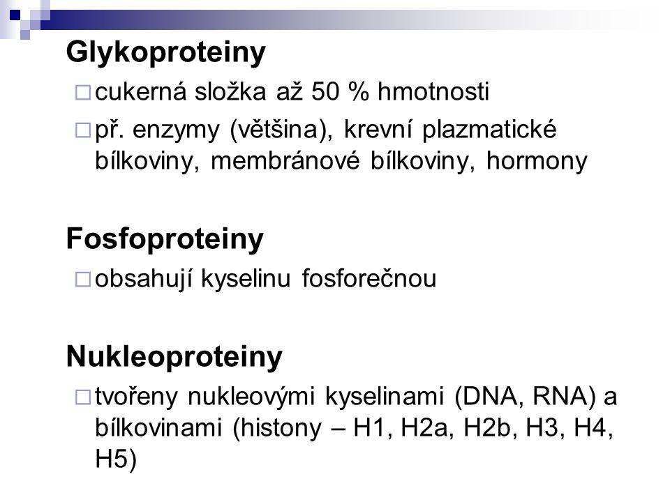 Glykoproteiny  cukerná složka až 50 % hmotnosti  př.