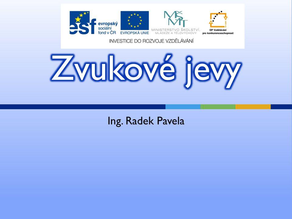 Ing. Radek Pavela