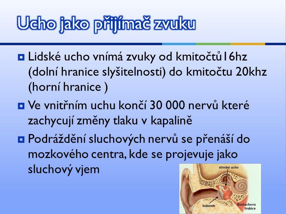  Lidské ucho vnímá zvuky od kmitočtů16hz (dolní hranice slyšitelnosti) do kmitočtu 20khz (horní hranice )  Ve vnitřním uchu končí 30 000 nervů které