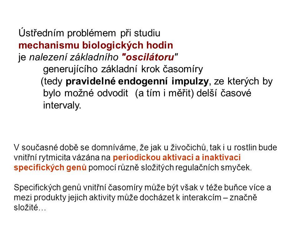 Ústředním problémem při studiu mechanismu biologických hodin je nalezení základního