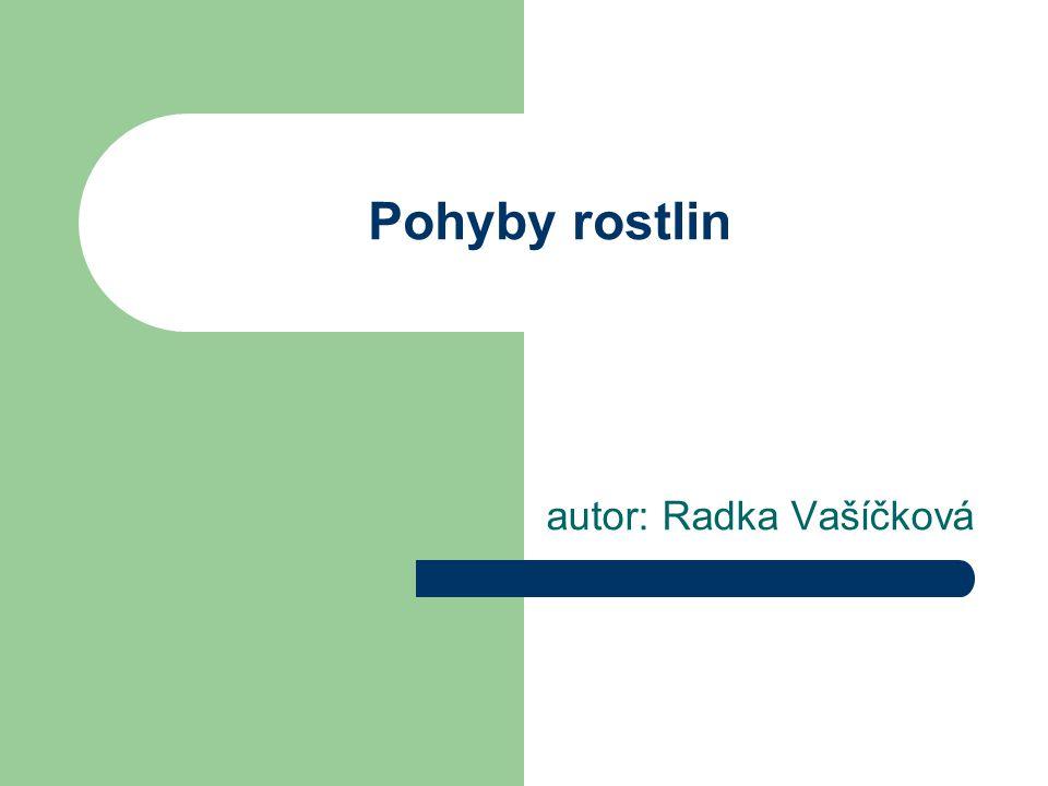 Pohyby rostlin autor: Radka Vašíčková