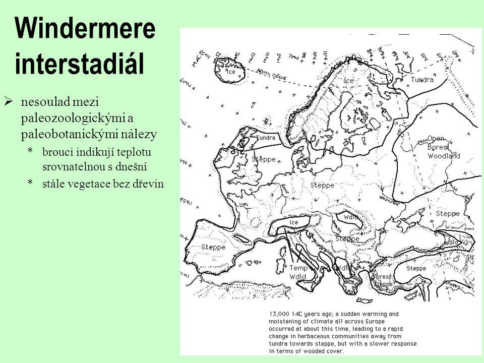 Windermere interstadiál  nesoulad mezi paleozoologickými a paleobotanickými nálezy *brouci indikují teplotu srovnatelnou s dnešní *stále vegetace bez