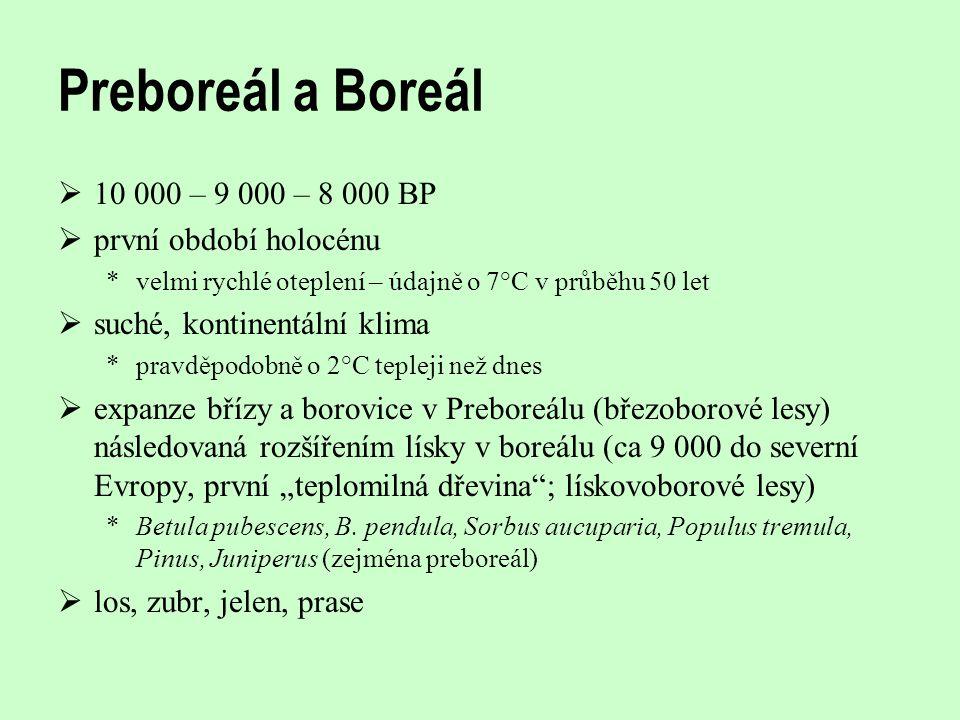 Preboreál a Boreál  10 000 – 9 000 – 8 000 BP  první období holocénu *velmi rychlé oteplení – údajně o 7°C v průběhu 50 let  suché, kontinentální k