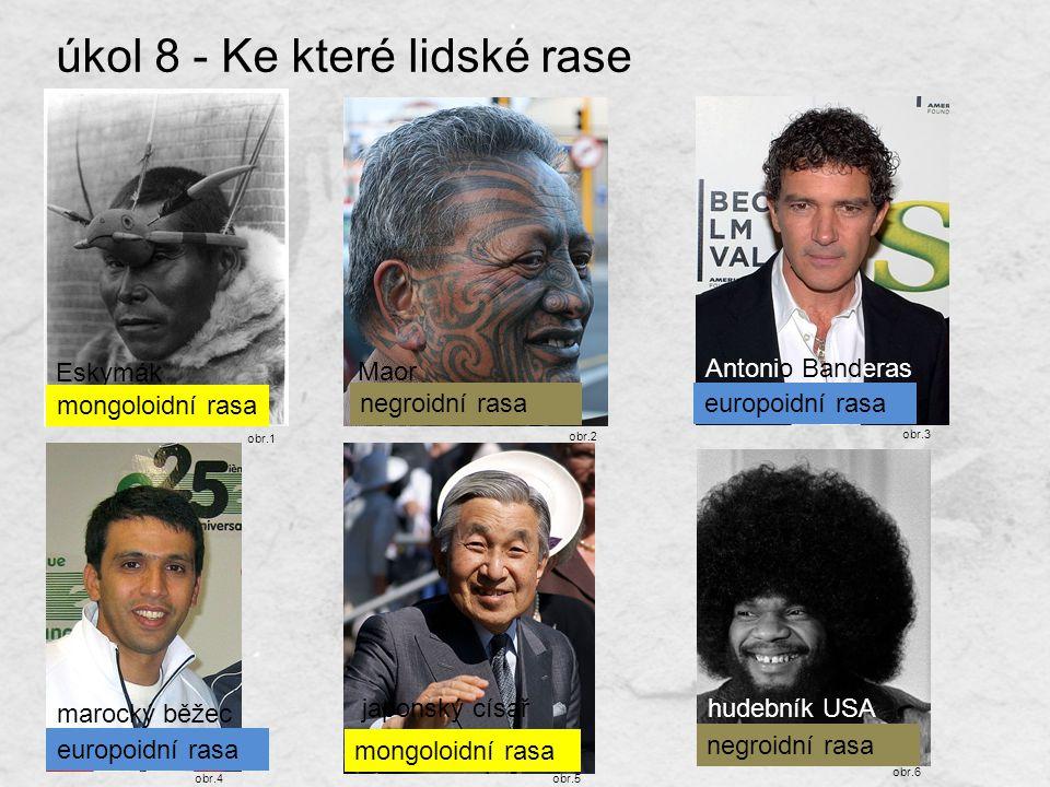 úkol 8 - Ke které lidské rase patří? Eskymák japonský císařhudebník USA Antonio Banderas marocký běžec Maor mongoloidní rasa europoidní rasa negroidní