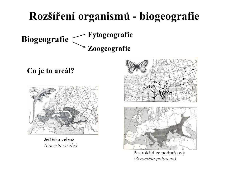 Rozšíření organismů - biogeografie Biogeografie Fytogeografie Zoogeografie Co je to areál.