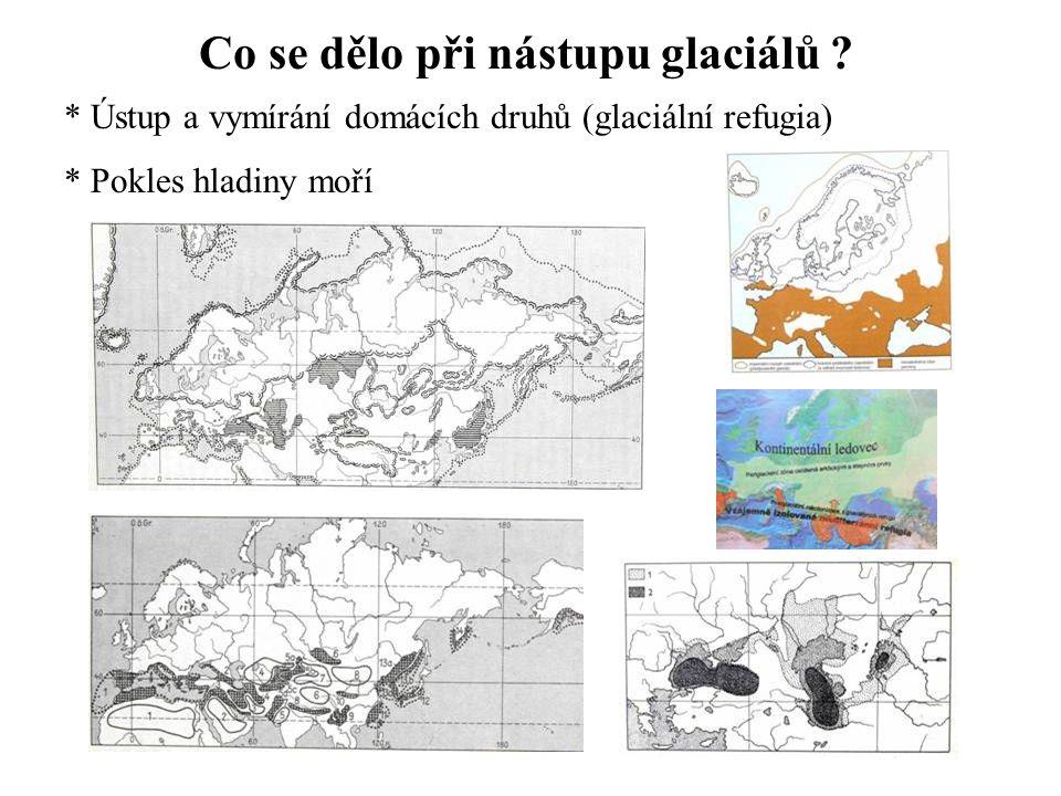 Co se dělo při nástupu glaciálů .