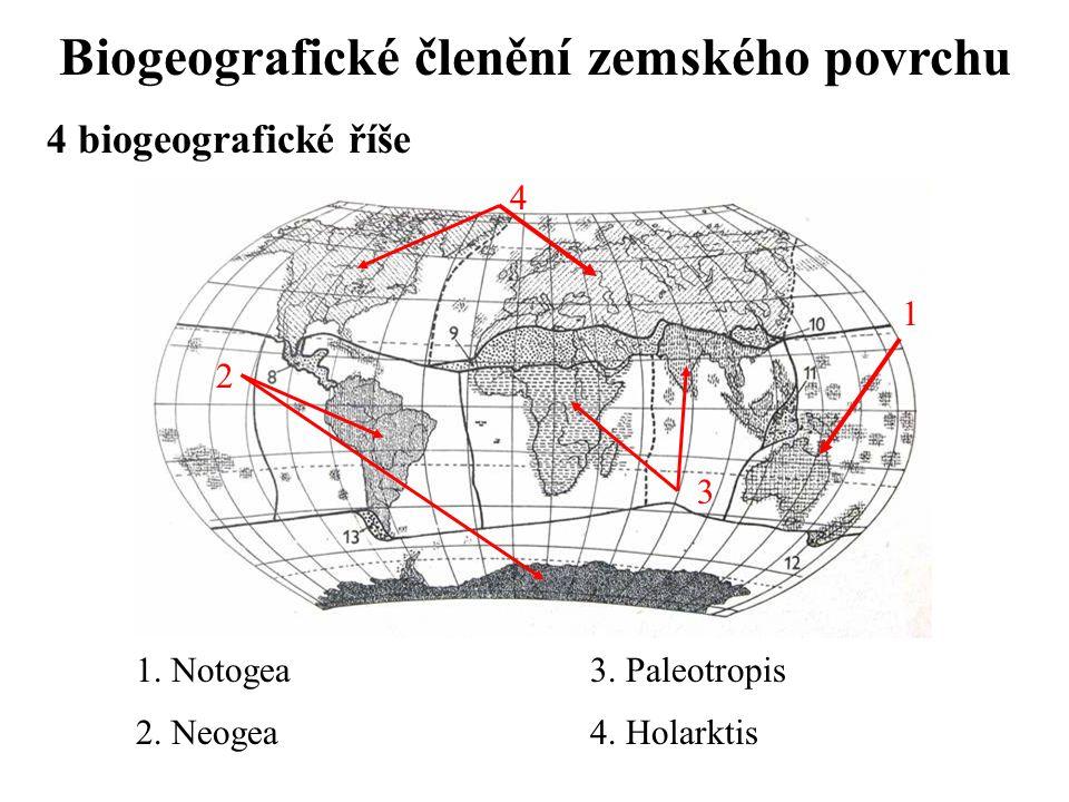 Biogeografické členění zemského povrchu 4 biogeografické říše 1.