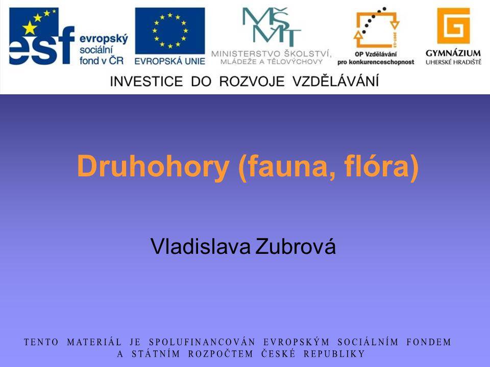 Druhohory (fauna, flóra) Vladislava Zubrová