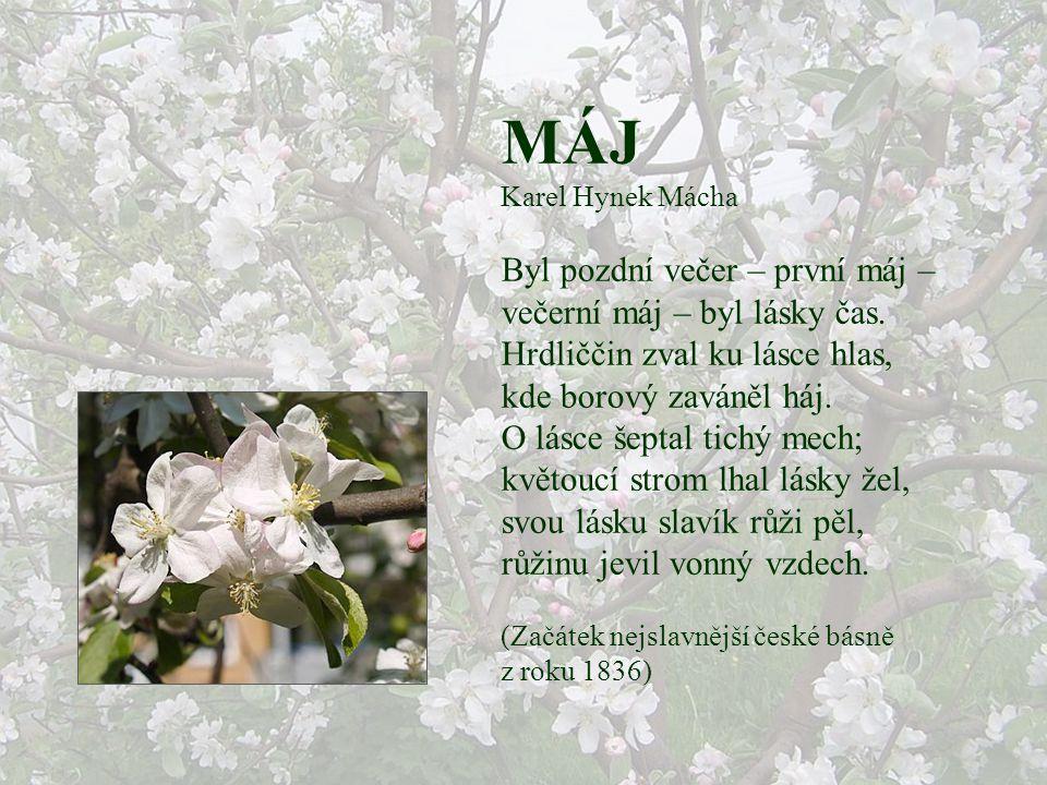 KVĚTEN Jan Susa Kdo chce znát jak kytky voní, ten se musí předklonit. Kdo se jaru nepokloní, bude z něho škarohlíd. Včelky bzučí kolem stromů, prohléd
