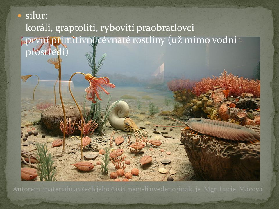 silur: koráli, graptoliti, rybovití praobratlovci první primitivní cévnaté rostliny (už mimo vodní prostředí) Autorem materiálu a všech jeho částí, ne