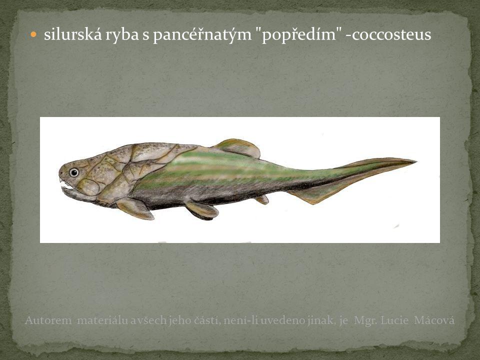 devon: rozvoj ryb – lalokoploutvé, dvojdyšné obojživelníci (krytolebci) první přesličky, plavuně a kapradiny Autorem materiálu a všech jeho částí, není-li uvedeno jinak, je Mgr.