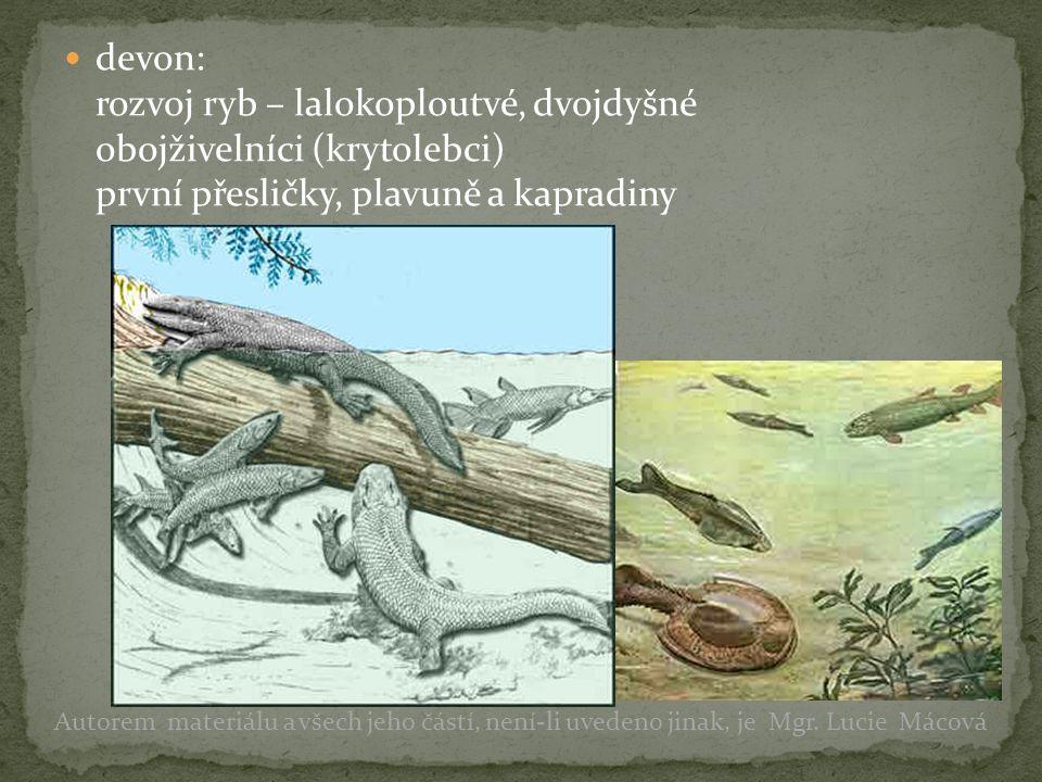 devon: rozvoj ryb – lalokoploutvé, dvojdyšné obojživelníci (krytolebci) první přesličky, plavuně a kapradiny Autorem materiálu a všech jeho částí, nen