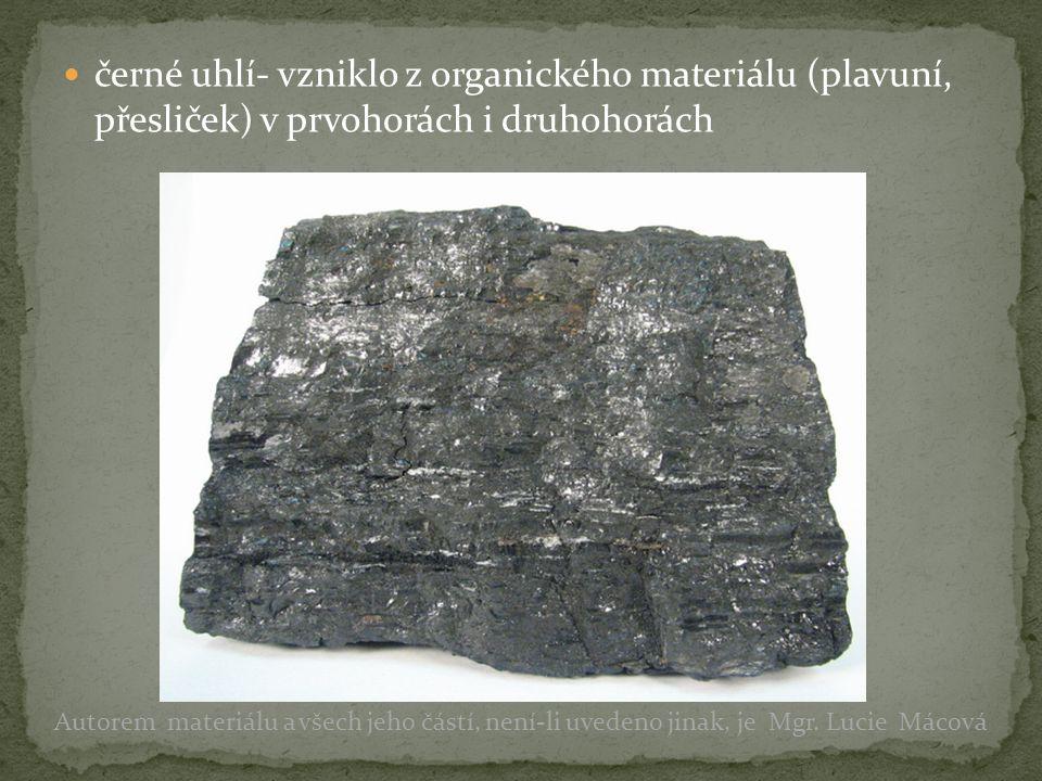 černé uhlí- vzniklo z organického materiálu (plavuní, přesliček) v prvohorách i druhohorách Autorem materiálu a všech jeho částí, není-li uvedeno jina
