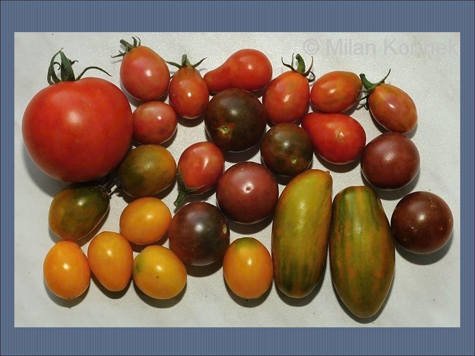 Paprika má velmi široký účinek.