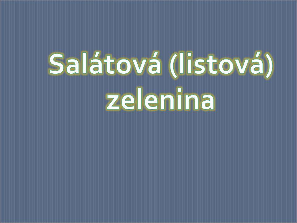 Salát je velmi bohatý na vitamíny a minerální látky.