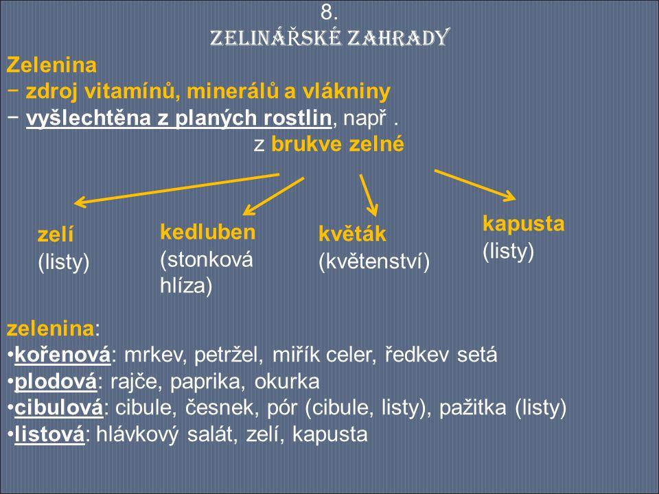 Závěr: 1)Jaké druhy zeleniny člověk pěstuje.Uveď u každého druhu 3 konkrétní příklady.