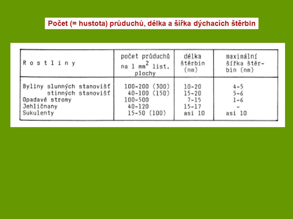 Počet (= hustota) průduchů, délka a šířka dýchacích štěrbin
