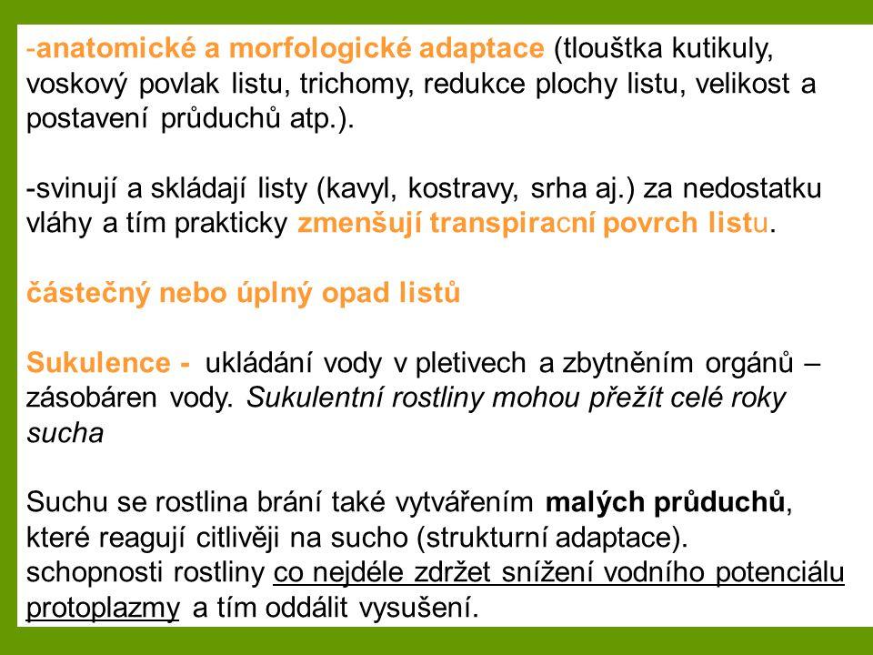 -anatomické a morfologické adaptace (tlouštka kutikuly, voskový povlak listu, trichomy, redukce plochy listu, velikost a postavení průduchů atp.). -sv