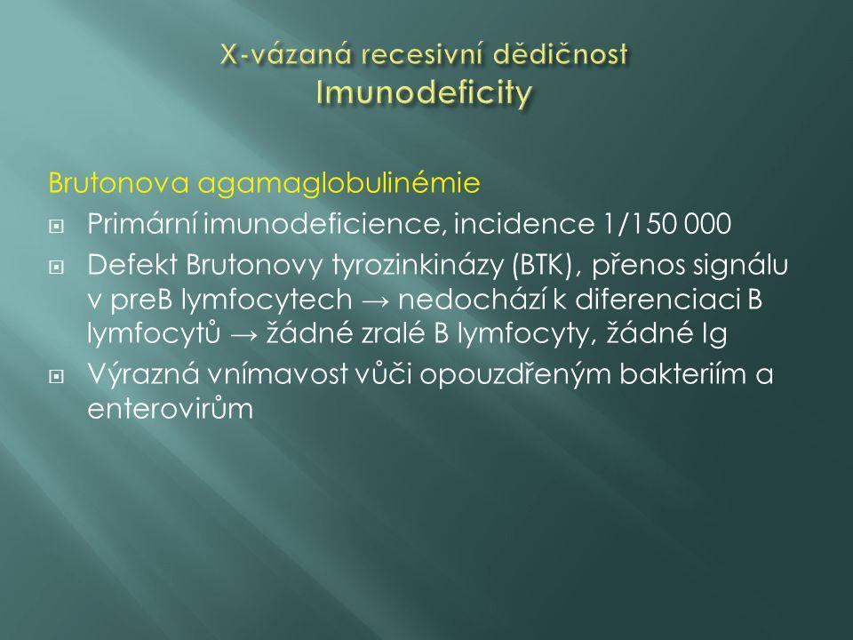 Brutonova agamaglobulinémie  Primární imunodeficience, incidence 1/150 000  Defekt Brutonovy tyrozinkinázy (BTK), přenos signálu v preB lymfocytech → nedochází k diferenciaci B lymfocytů → žádné zralé B lymfocyty, žádné Ig  Výrazná vnímavost vůči opouzdřeným bakteriím a enterovirům