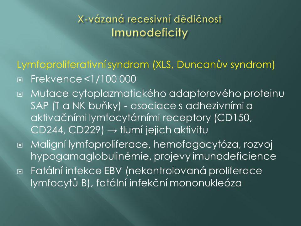 Lymfoproliferativní syndrom (XLS, Duncanův syndrom)  Frekvence <1/100 000  Mutace cytoplazmatického adaptorového proteinu SAP (T a NK buňky) - asociace s adhezivními a aktivačními lymfocytárními receptory (CD150, CD244, CD229) → tlumí jejich aktivitu  Maligní lymfoproliferace, hemofagocytóza, rozvoj hypogamaglobulinémie, projevy imunodeficience  Fatální infekce EBV (nekontrolovaná proliferace lymfocytů B), fatální infekční mononukleóza