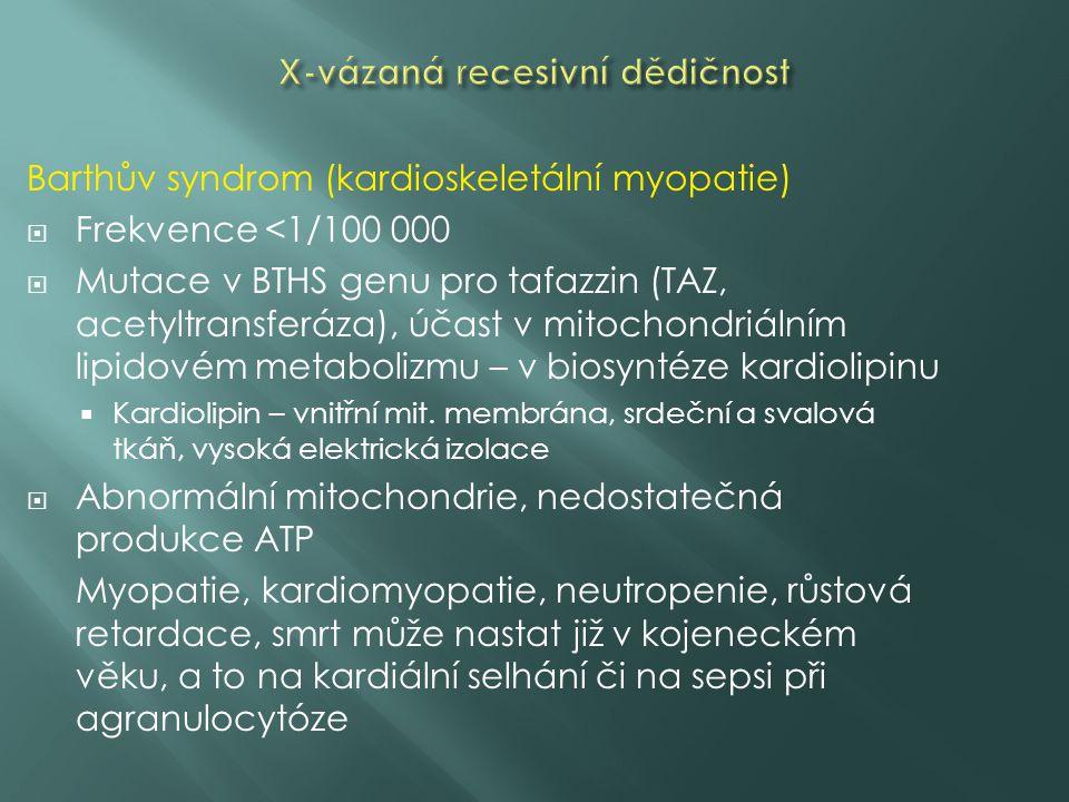 Barthův syndrom (kardioskeletální myopatie)  Frekvence <1/100 000  Mutace v BTHS genu pro tafazzin (TAZ, acetyltransferáza), účast v mitochondriálním lipidovém metabolizmu – v biosyntéze kardiolipinu  Kardiolipin – vnitřní mit.