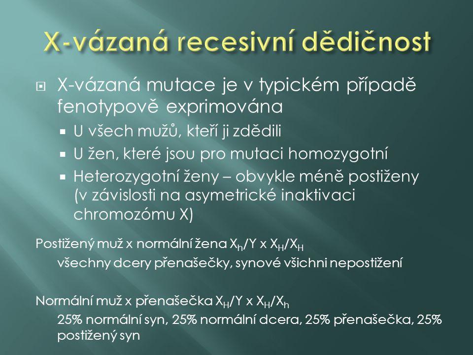  X-vázaná mutace je v typickém případě fenotypově exprimována  U všech mužů, kteří ji zdědili  U žen, které jsou pro mutaci homozygotní  Heterozygotní ženy – obvykle méně postiženy (v závislosti na asymetrické inaktivaci chromozómu X) Postižený muž x normální žena X h /Y x X H /X H všechny dcery přenašečky, synové všichni nepostižení Normální muž x přenašečka X H /Y x X H /X h 25% normální syn, 25% normální dcera, 25% přenašečka, 25% postižený syn