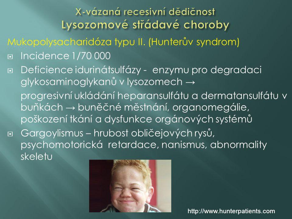 Mukopolysacharidóza typu II. (Hunterův syndrom)  Incidence 1/70 000  Deficience idurinátsulfázy - enzymu pro degradaci glykosaminoglykanů v lysozome