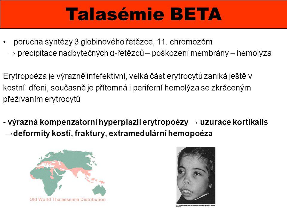 porucha syntézy β globinového řetězce, 11. chromozóm → precipitace nadbytečných α-řetězců – poškození membrány – hemolýza Erytropoéza je výrazně infef