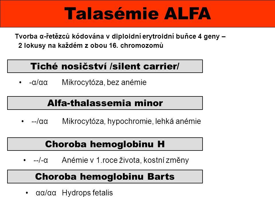 Tvorba α-řetězců kódována v diploidní erytroidní buňce 4 geny – 2 lokusy na každém z obou 16. chromozomů Talasémie ALFA Tiché nosičství /silent carrie