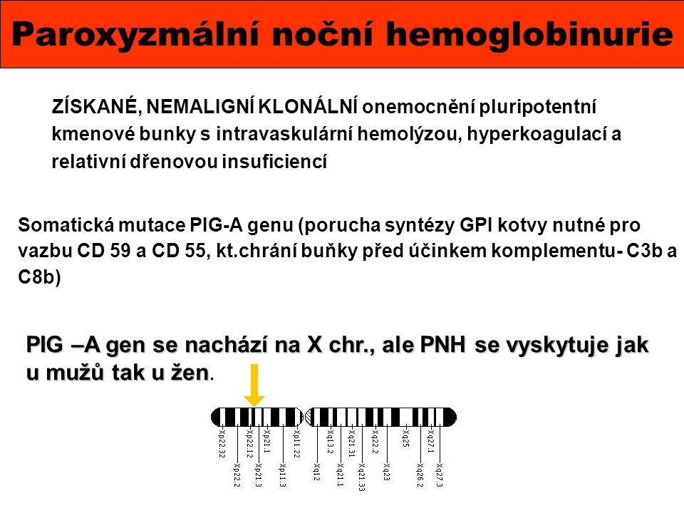 Paroxyzmální noční hemoglobinurie ZÍSKANÉ, NEMALIGNÍ KLONÁLNÍ onemocnění pluripotentní kmenové bunky s intravaskulární hemolýzou, hyperkoagulací a rel