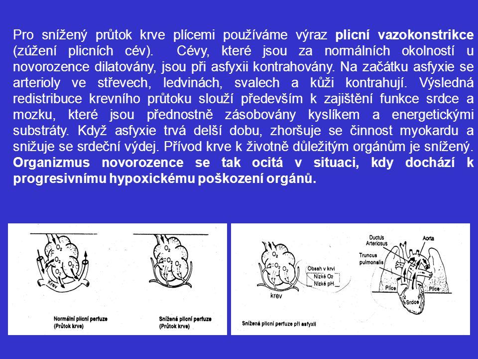 Pro snížený průtok krve plícemi používáme výraz plicní vazokonstrikce (zúžení plicních cév). Cévy, které jsou za normálních okolností u novorozence di