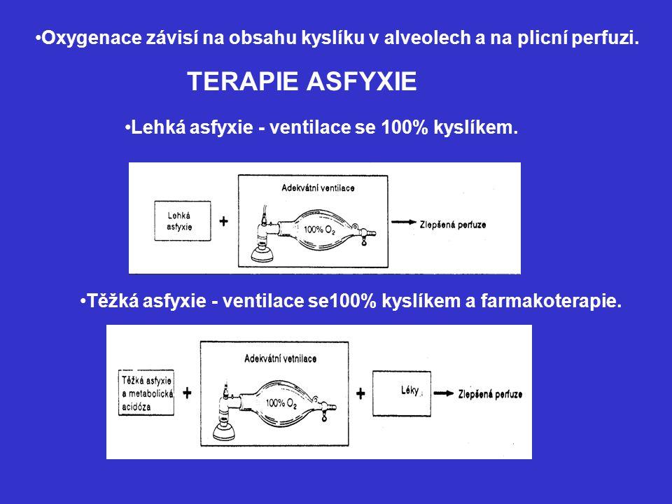 Oxygenace závisí na obsahu kyslíku v alveolech a na plicní perfuzi. TERAPIE ASFYXIE Lehká asfyxie - ventilace se 100% kyslíkem. Těžká asfyxie - ventil