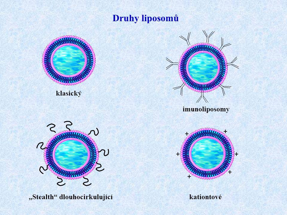 """Druhy liposomů klasický kationtové imunoliposomy """"Stealth"""" dlouhocirkulující + + + + + +"""