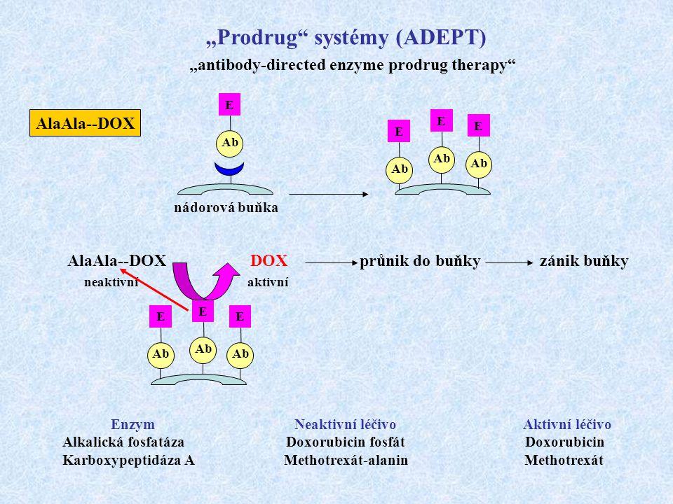 """""""Prodrug"""" systémy (ADEPT) """"antibody-directed enzyme prodrug therapy"""" Ab E E E E E E E AlaAla--DOX DOX průnik do buňky zánik buňky neaktivní aktivní ná"""
