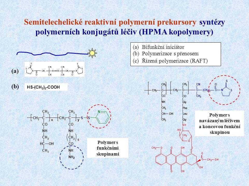 Semitelechelické reaktivní polymerní prekursory syntézy polymerních konjugátů léčiv (HPMA kopolymery) Polymer s navázaným léčivem a koncovou funkční s