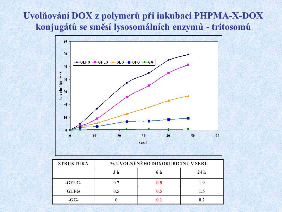 Uvolňování DOX z polymerů při inkubaci PHPMA-X-DOX konjugátů se směsí lysosomálních enzymů - tritosomů STRUKTURA% UVOLNĚNÉHO DOXORUBICINU V SÉRU 3 h6