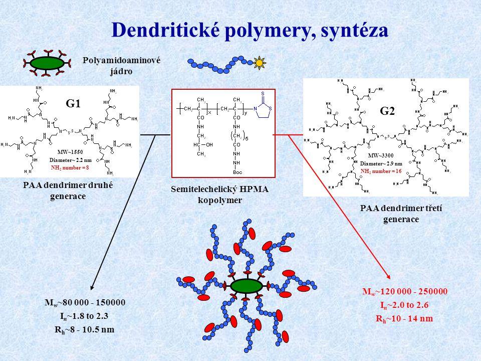 Dendritické polymery, syntéza G1 G2 M w ~80 000 - 150000 I n ~1.8 to 2.3 R h ~8 - 10.5 nm M w ~120 000 - 250000 I n ~2.0 to 2.6 R h ~10 - 14 nm MW~155