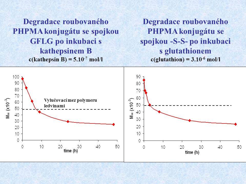 Degradace roubovaného PHPMA konjugátu se spojkou GFLG po inkubaci s kathepsinem B c(kathepsin B) = 5.10 -7 mol/l Degradace roubovaného PHPMA konjugátu