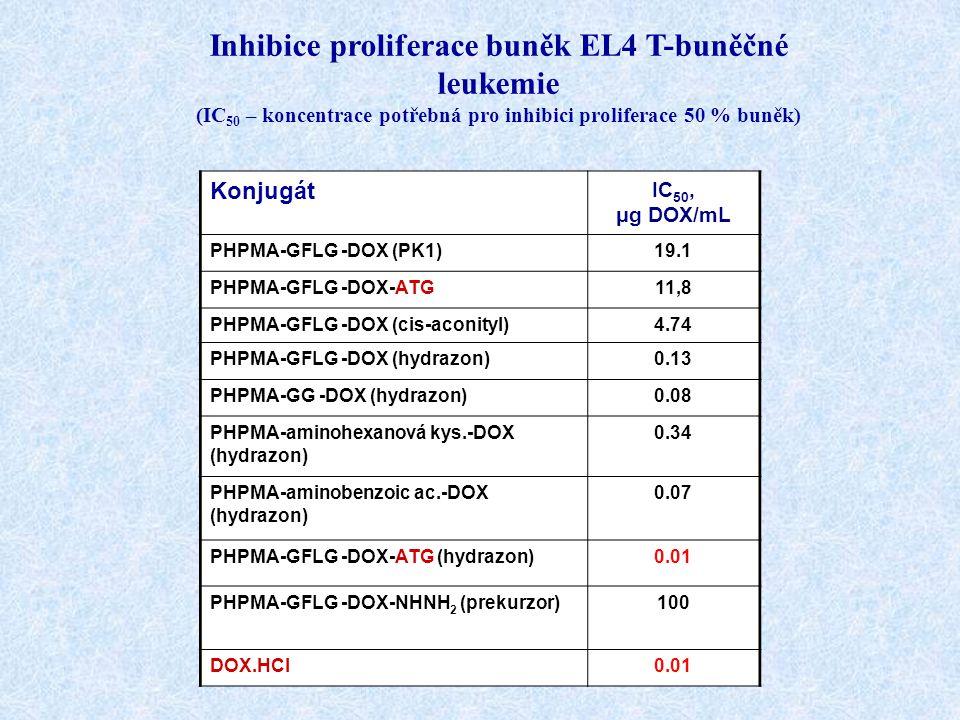 Inhibice proliferace buněk EL4 T-buněčné leukemie (IC 50 – koncentrace potřebná pro inhibici proliferace 50 % buněk) Konjugát IC 50, μg DOX/mL PHPMA-G