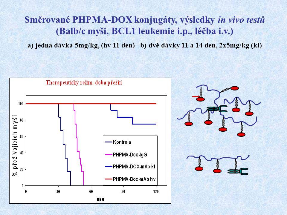 Směrované PHPMA-DOX konjugáty, výsledky in vivo testů (Balb/c myši, BCL1 leukemie i.p., léčba i.v.) a) jedna dávka 5mg/kg, (hv 11 den) b) dvě dávky 11