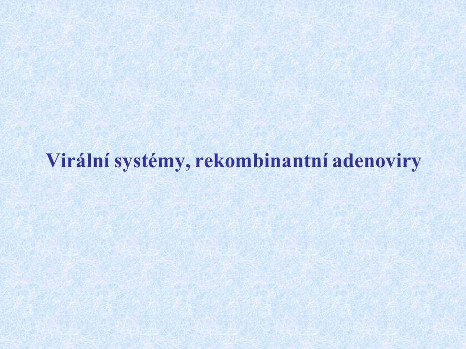 Virální systémy, rekombinantní adenoviry