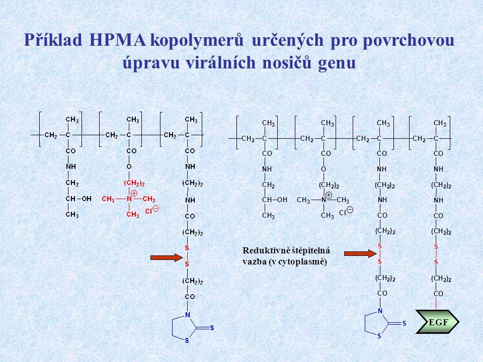Příklad HPMA kopolymerů určených pro povrchovou úpravu virálních nosičů genu CH 2 C CH 3 CO NH CH 2 CH CH 3 OH CH 2 C CH 3 CO O (CH 2 ) 2 NCH 3 CH 3 C