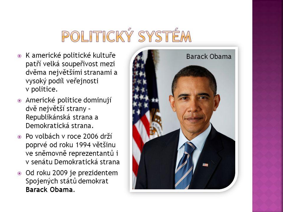  K americké politické kultuře patří velká soupeřivost mezi dvěma největšími stranami a vysoký podíl veřejnosti v politice.