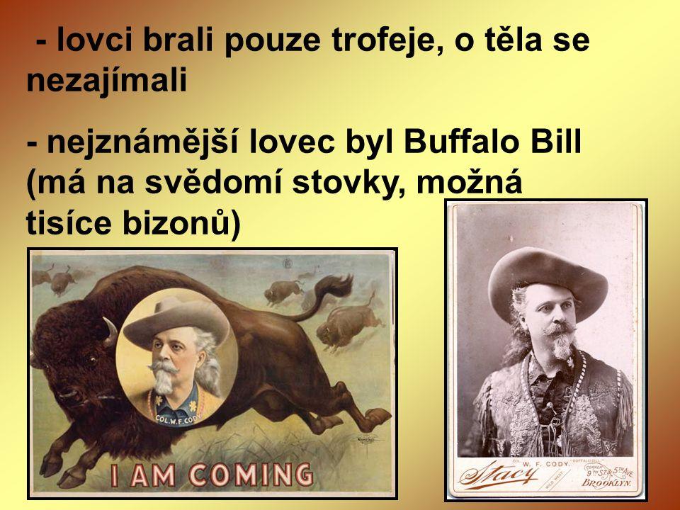 - lovci brali pouze trofeje, o těla se nezajímali - nejznámější lovec byl Buffalo Bill (má na svědomí stovky, možná tisíce bizonů)