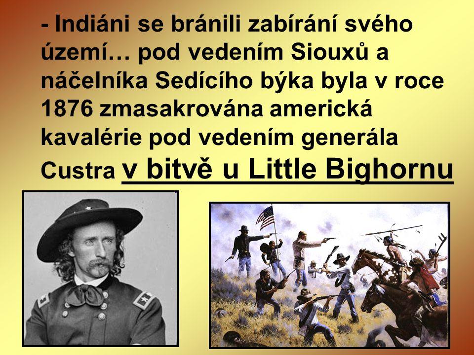 - Indiáni se bránili zabírání svého území… pod vedením Siouxů a náčelníka Sedícího býka byla v roce 1876 zmasakrována americká kavalérie pod vedením g