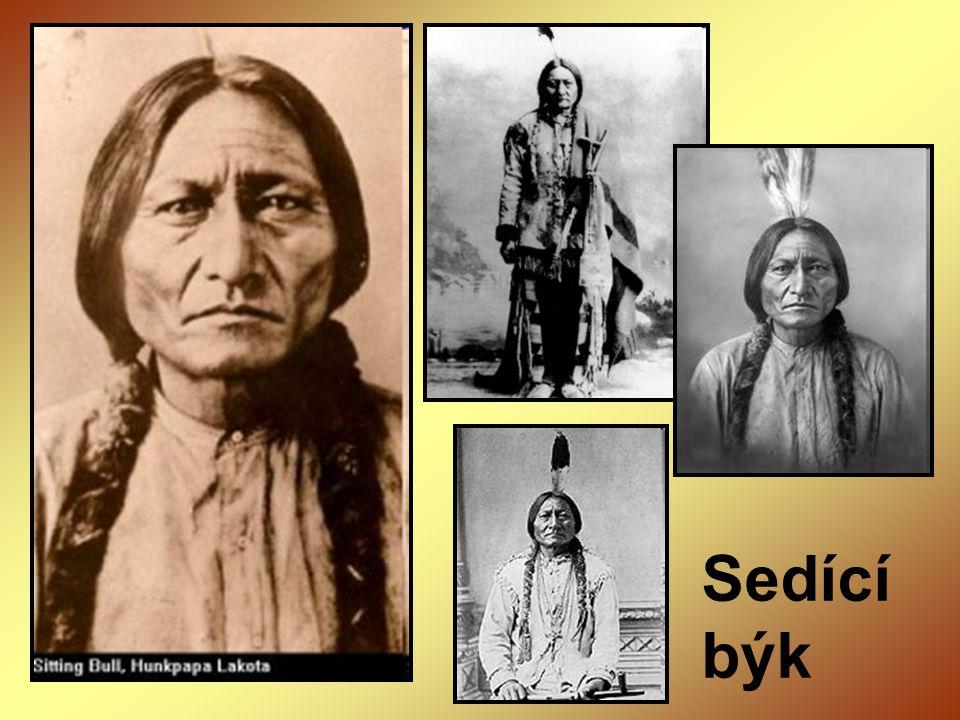 - kromě Indiánů byli bezprávní i černoši – dostávali se do Ameriky jako otroci otroctví se stává velkým problémem Ameriky