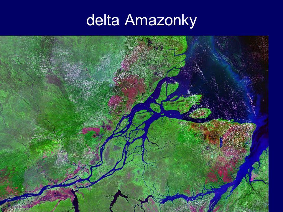 delta Amazonky